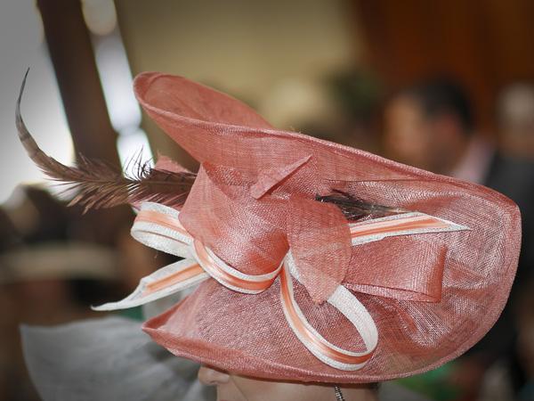 Otra vision de los invitados a la  Boda de Ruben y Marien en la ceremonia (5/6)
