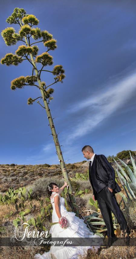 Diego y Encarni, reportaje del dia de su boda en Adra  (2/3)