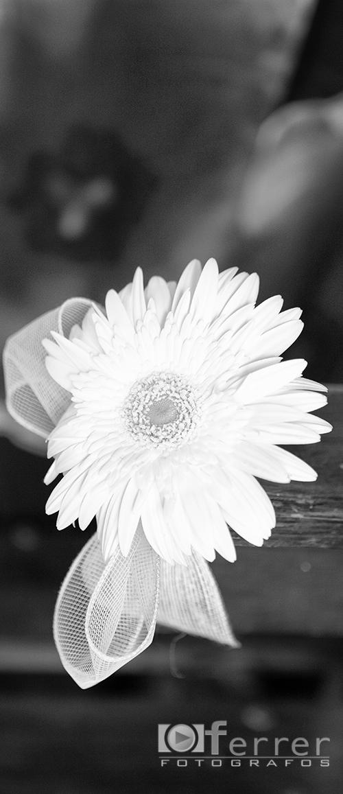 Flores de el  enlace de Patricia y Manuel