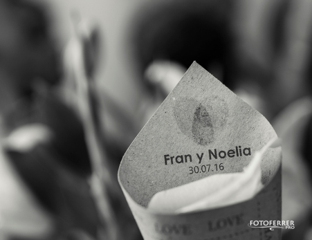 frannoelia002